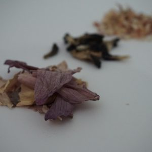 Sacred Lotus Flower Tea 5g