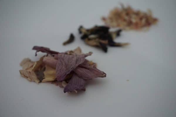Buy Sacred Lotus Flower Tea