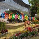Khao Saming Orchid Festival 2017