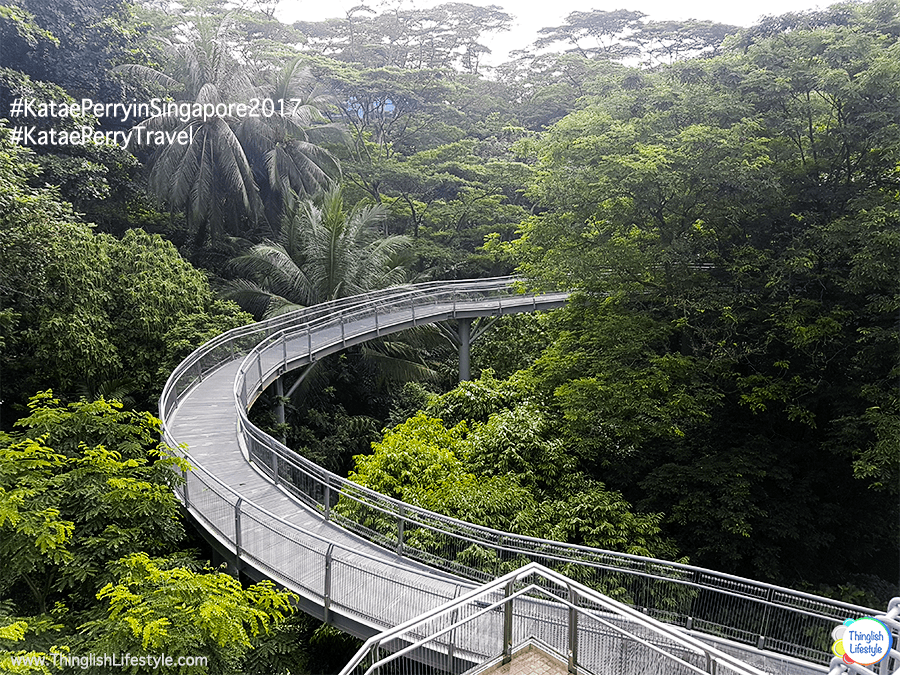 Henderson's Wave Bridge - Singapore